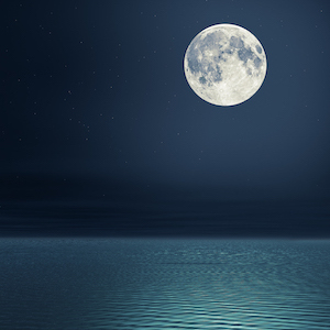 アーユルヴェーダの国、スリランカに学び満月の日を休日に
